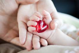 Hands holding a symbolic heart representing Cardiovascular Risk